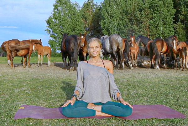Boho Beautiful Beginners Yoga