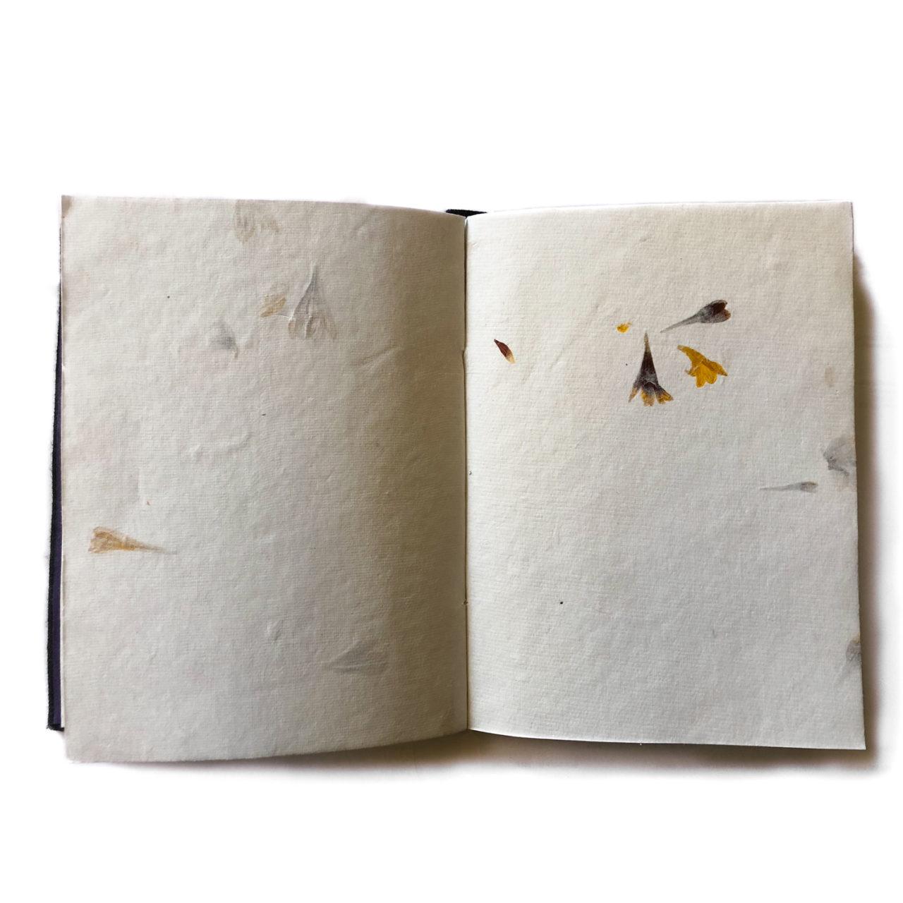 Boho Beautiful Diary